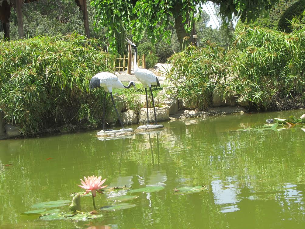 הגן היפני המלצה לטיול מדניג'יפ