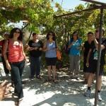 wine presses of the Gilboa